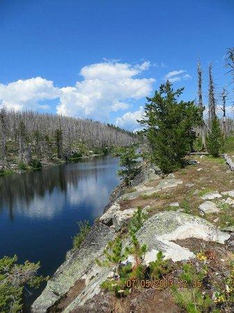 Okanagan Mountain Provincial Park