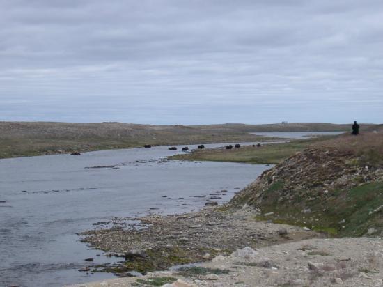 Ovayok Territorial Park